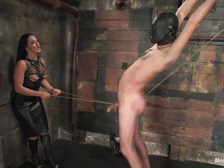 Порно госпожа водит раба за член